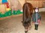 Pony Hopp