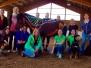 ABC des Pferdetrainings